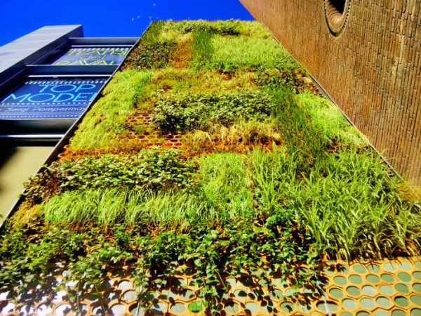 vertical garden in barcelona Rainwater-Harvesting Vertical Garden Flourishes on the