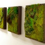 Moss Walls The Newest Trend In Biophilic Interiors Inhabitat Green Design Innovation Architecture Green Building