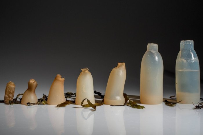 Biodegradable water bottle, algae water bottle, agar water bottle, Ari Jónsson, sustainable design, green design, sustainable product design, green product design