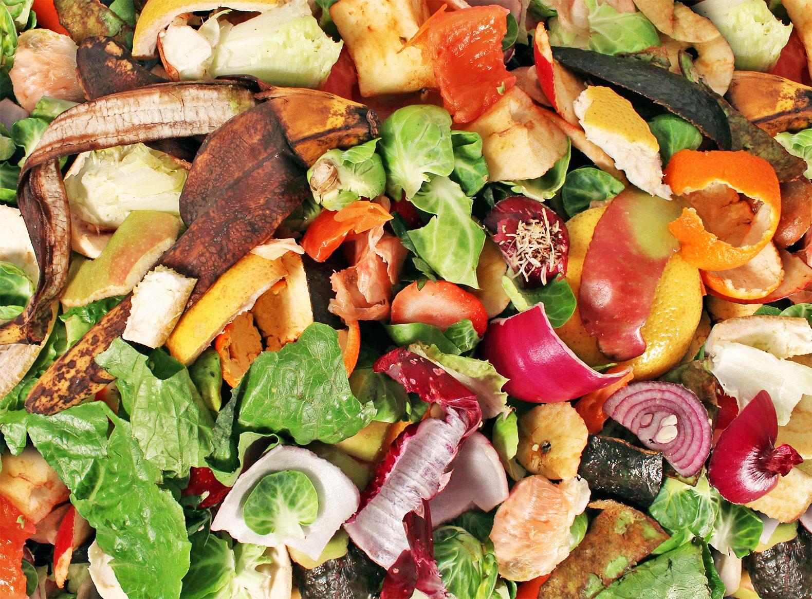 Organic Food Waste Of Money