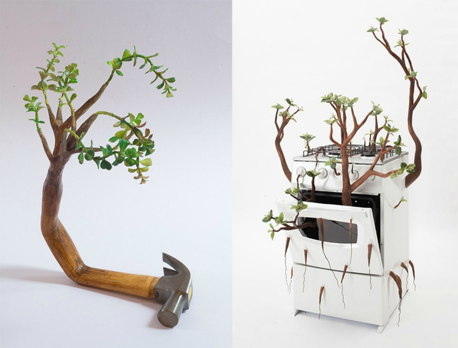 Everyday Objects Return To Their Roots By Sprouting