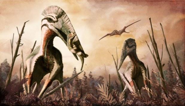 Pterosaur, pterosaurs, reptile, reptiles, animal, animals, fossil, fossils, fossil bone, fossil bones, bone, bones, Gobi Desert, Mongolia, ancient, ancient animal, ancient animals, University of Tokyo