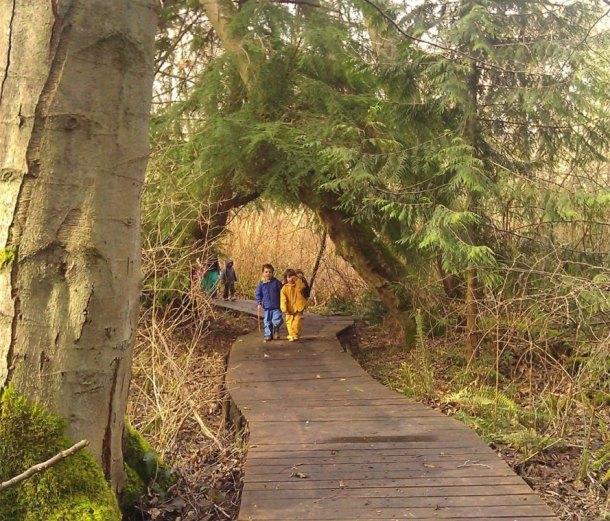 Nature Kids Preschool, Discovery Park Nature Preschool, nature preschool, preschool, nature, kids, children