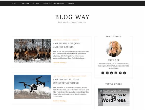 Free WordPress Blog themes 2018 हिंदी में