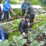 Harker School students working in the Garden at Inian Islands Institute. During their stay they learned the importance of good rain gear... as it rained every day!