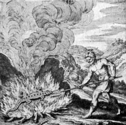 Plate illustration of salamander surviving fire