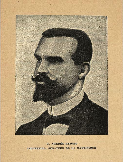 Stock photo of Martinique Senator Knight