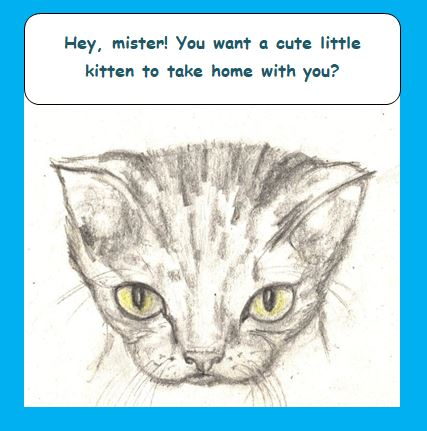 Cartoon cute kitten asking stranger for home