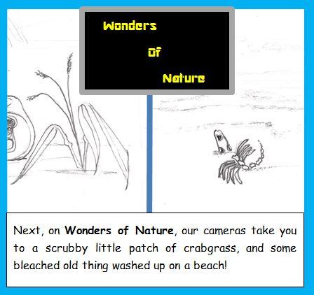 Cartoon of TV nature show