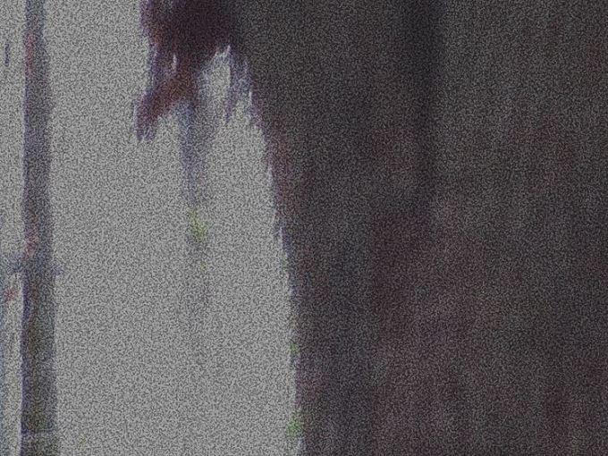 Photo altered digitally