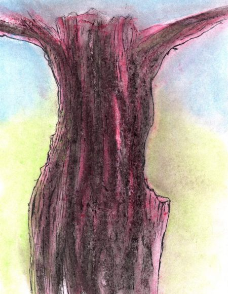 Pastel and pen drawing of tree trunk