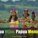 pesona Papua destinasi wisata hijau dengan alamnya yang memukau