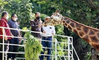 Permalink ke Asyiik…Kebun Binatang Surabaya Dibuka Kembali Mulai Minggu Besok! Cak Eri Ingatkan Hal Penting Ini