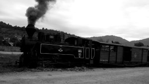 maramures-vallee-viser-mocanita-train