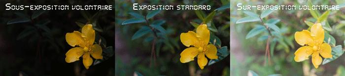 Fig. 2 - Trois expositions dans une ambiance d'éclairage standard