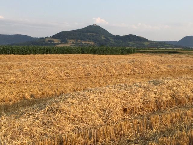 Eindrücke von der Getreideernte am Hungerberg