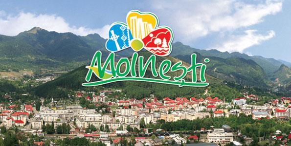 se intampla in moinesti - campanii proiecte evenimente pentru comunitate