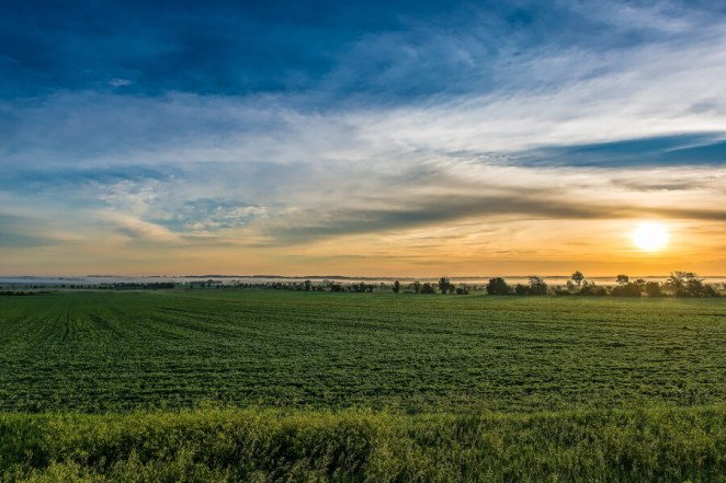 Green, Open Field Outside Iowa City