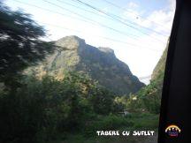 taberecusuflet-1009-2
