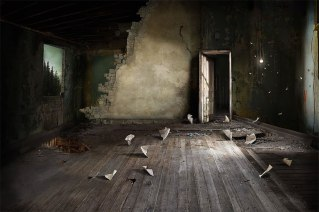 surreal-indoor-landscapes-art-interiors-suzanne-moxhay-5898735b55679__880