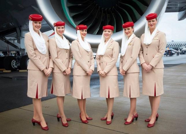 Image result for стюардессы стильные