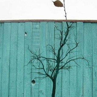 nature-street-art-15-58edd645859f7__700