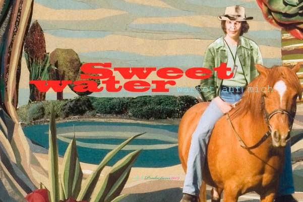 Souvenirpostkarte (Sweetwater wartet auf mich), 2011