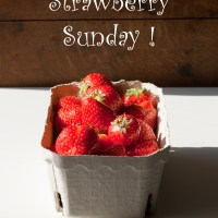 Endlich wieder Erdbeerzeit!!!
