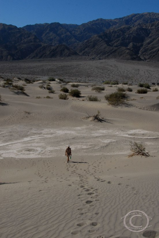 D at the base of a dune.