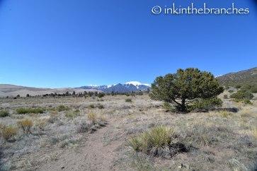 Trail near camp