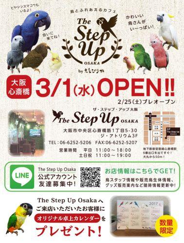 The Step up Osaka byえとぴりかのチラシ・フライヤー