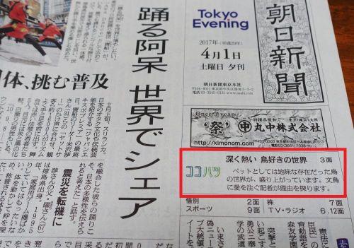 朝日新聞・夕刊に鳥フェスを取材した記事が掲載