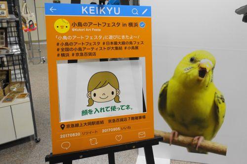 小鳥のアートフェスタSNSハッシュタグ「#小鳥展、#横浜」