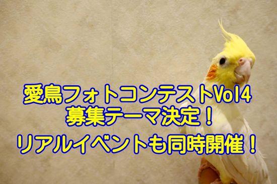 第四回・酉年☆愛鳥フォトコンテストが2017年10月に開催決定!