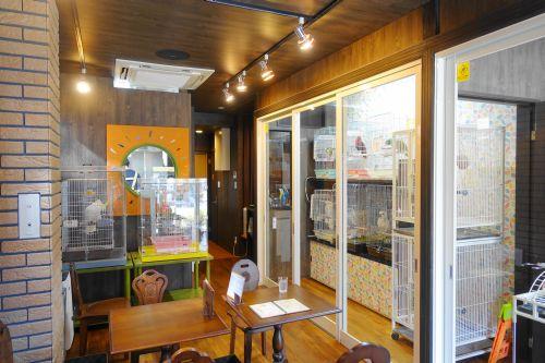 関東地方の埼玉・東川口の鳥カフェ「オウムのカフェ FREAK」のお店の内装・内観・雰囲気