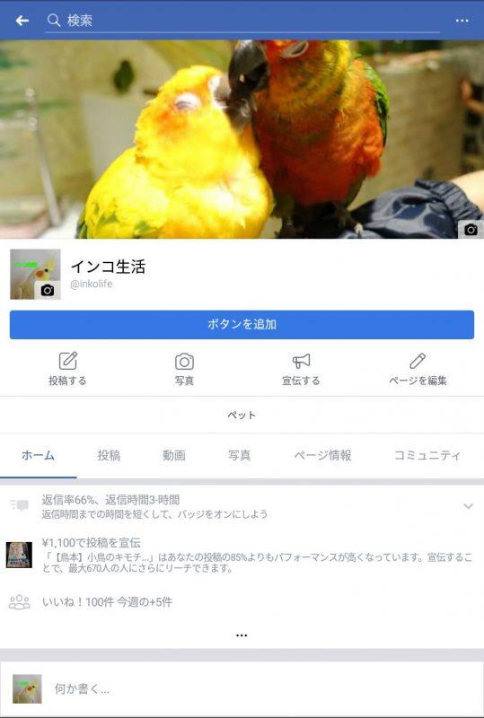 20171125_inko_004