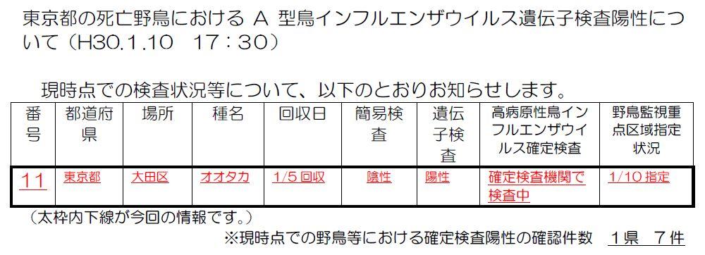 環境省からの東京都大田区のオオタカの鳥インフルエンザについて調査発表