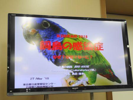 愛鳥祭2018の2日目の講演、飼い鳥の感染症(眞田靖幸)