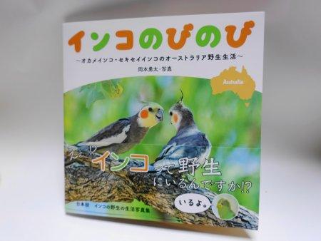 野生のインコ写真家・岡本勇太氏の写真集「インコのびのび」が発売(表紙画像)