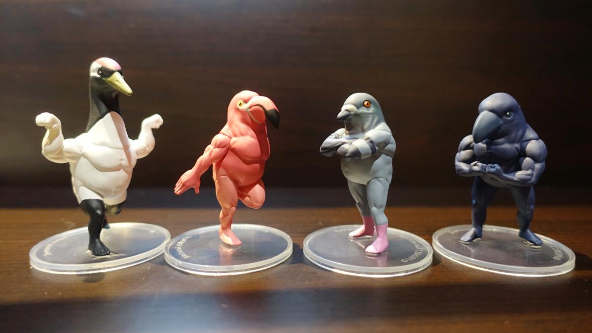 入手したガチムチ鳥3のツル、フラミンゴ、ハト、カラスの4種類