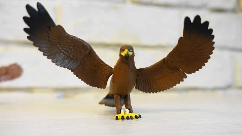 猛禽類ガチャ「鳥たちの世界」のイヌワシが翼を広げた姿