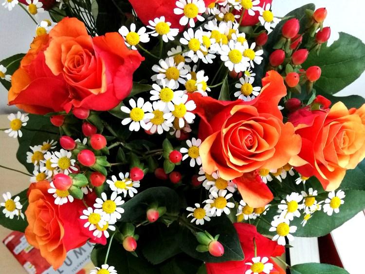 Romance_Blumen_6.jpg