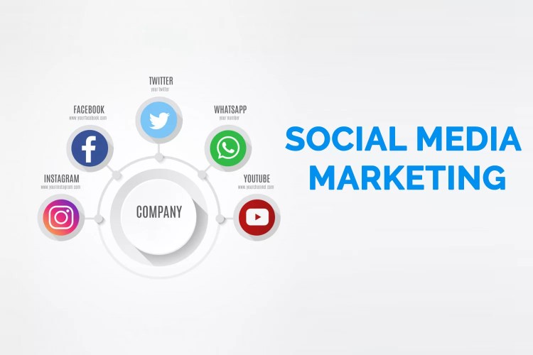 Web Marketing - Social Media Marketing - Agentie Web and Digital Marketing Timisoara - Servicii Marketing Timisoara - Arad