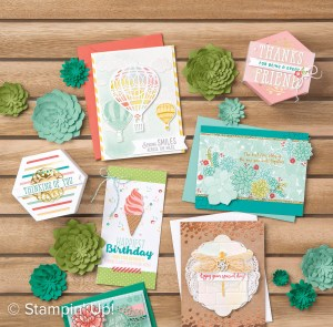 2017 Stampin' Up! Occasions Catalog Cover