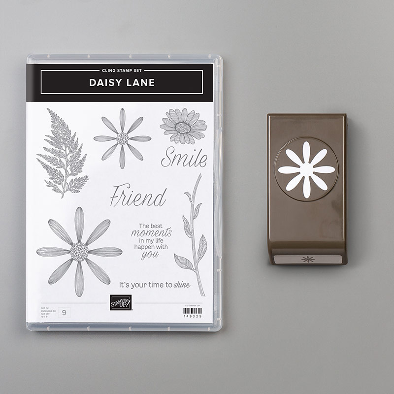 Daisy Lane stamp set and Medium Daisy punch bundled together.