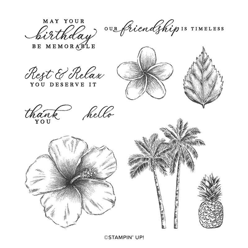 Timeless Tropical stamp set with hibiscus flowers, leaves, pineapple, and palm tree images. This set also includes 5 birthday and all occasion greetings.