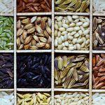rice diversity