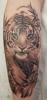 rachel tiger