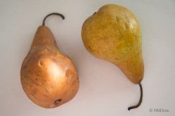 Pears (6 of 12)