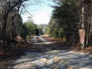 The Friends of Holts Landing State Park have a lot of work to do, which started with this trail Jan. 10.(Photo by: Dotty LeCates)